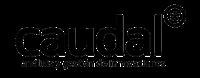 Logotipo Caudal
